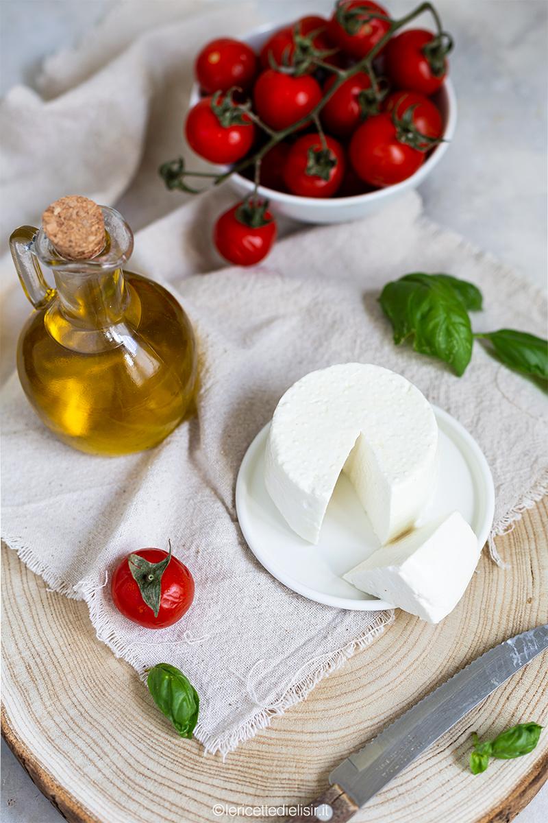 Primosale fatto in casa formaggio fresco